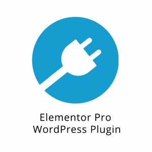 Elementor Pro WordPress Plugin 1.13.2