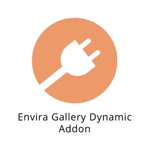 Envira Gallery Dynamic Addon 1.4.2